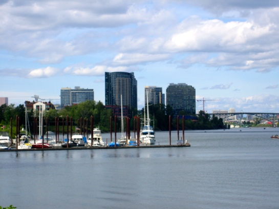 view of the the South Waterfront from further south