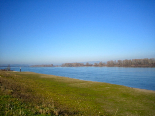 Sauvie Island - my favorite idyllic getaway only 10 miles upriver