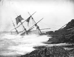 blk:wt half sunk on rocks