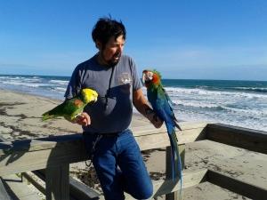 parrot guy