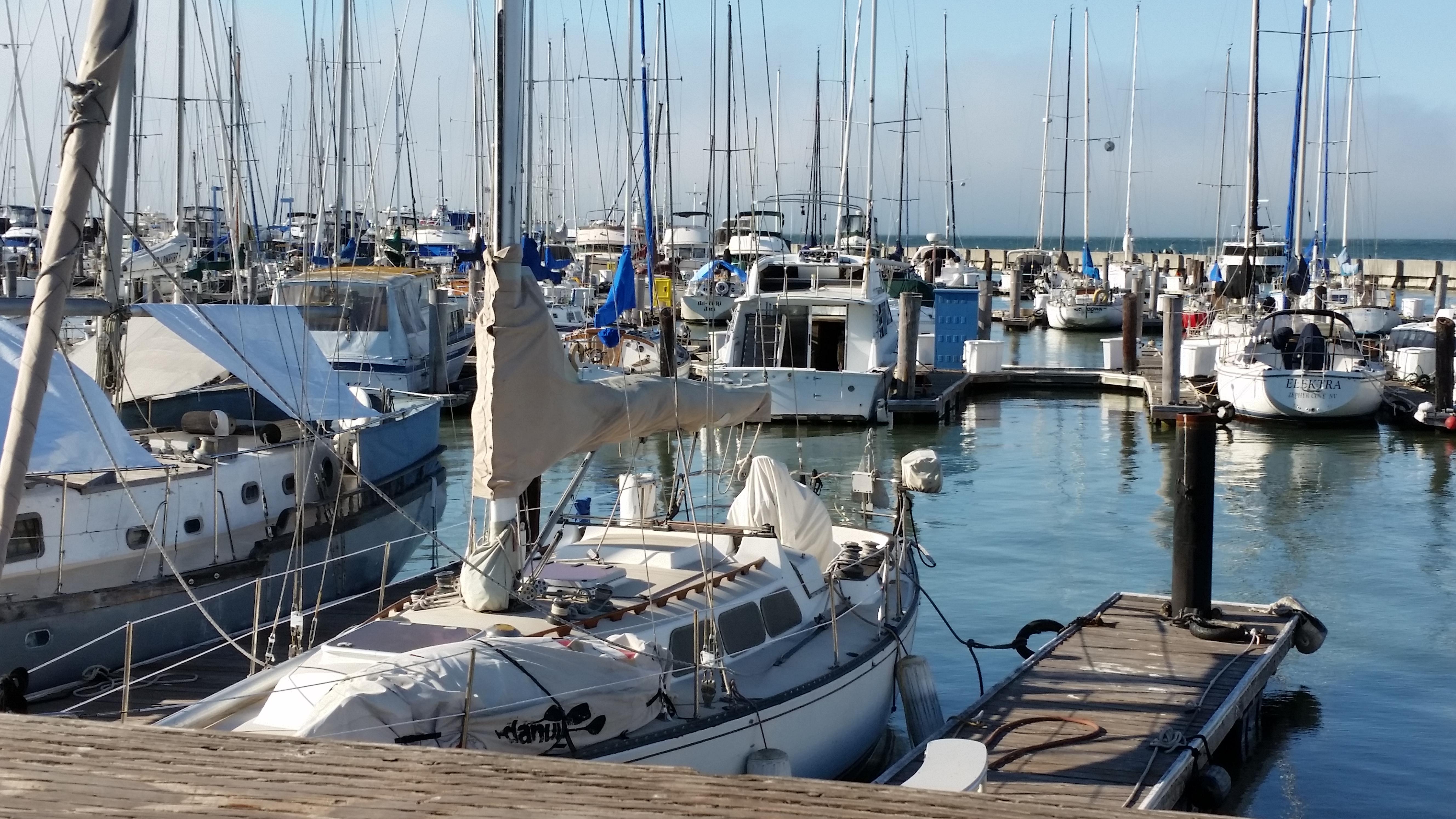 Marina SF 2